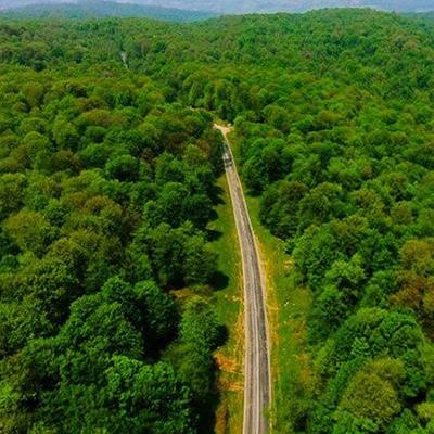 فودلرد- جنگل های هیرکانی- درباره ما