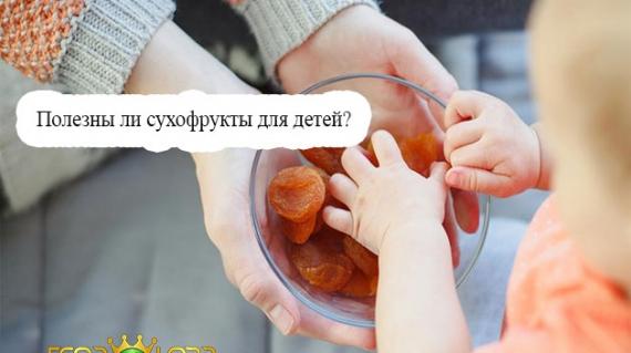 Полезны ли сухофрукты для детей?