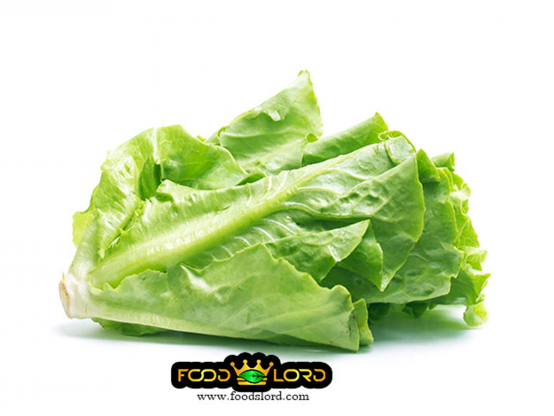 foodslord.com- fresh fruits- Lettuce