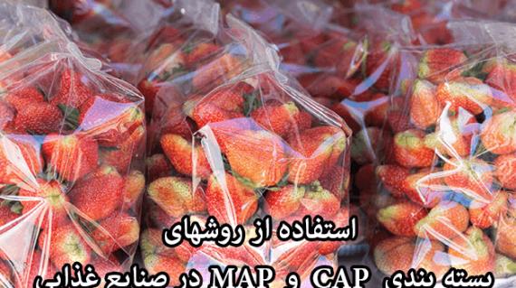 foodslord.com---استفاده-از-روشهای-بسته-بندی-MAP-و-CAP-در-صنایع-غذایی