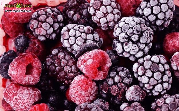 foodslord.com---Freeze-drying---Dehydration