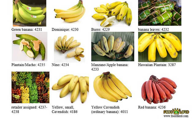 foodslord.com---Types-of-PLU-codes-on-fruits