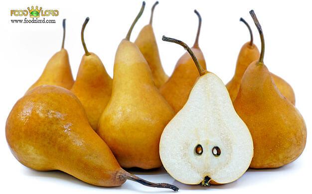 foodslord.com---Bosc-pear
