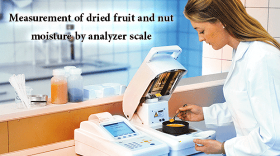 foodslord.com---Measurement-of-dried-fruit-and-nut-moisture-by-analyzer-scale