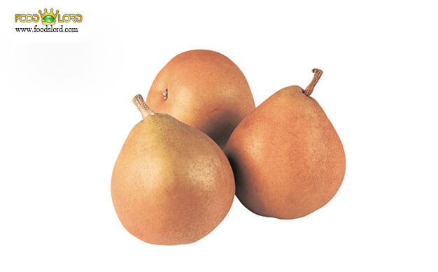 foodslord.com---Taylor's-Gold-Pear