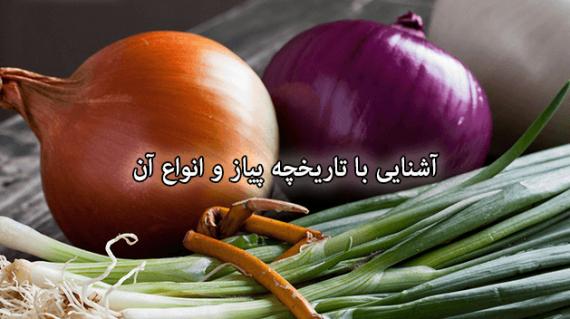 foodslord.com---آشنایی-با-تاریخچه-پیاز-و-انواع-آن