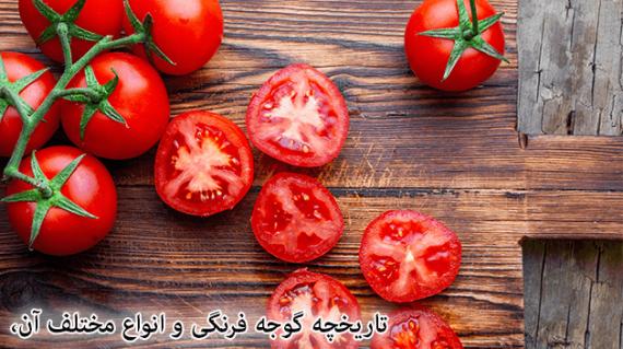 foodslord.com---تاریخچه-گوجه-فرنگی-و-انواع-مختلف-آن