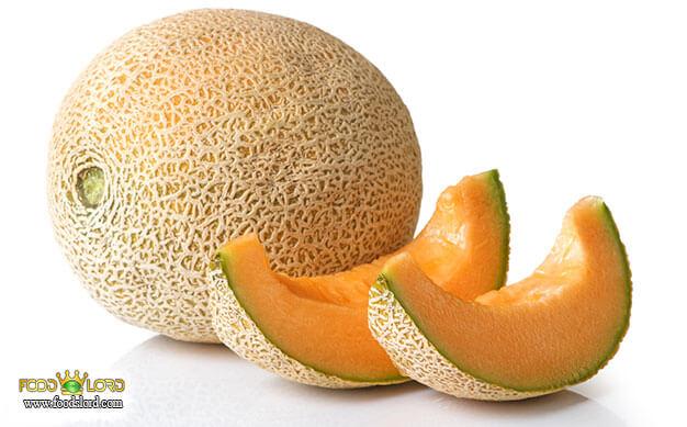 foodslord.com---Cantaloupe---History-melon-types