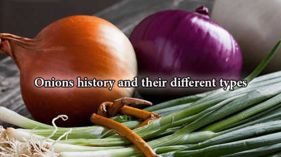 foodslord.com---Onions-history-and-their-different-types