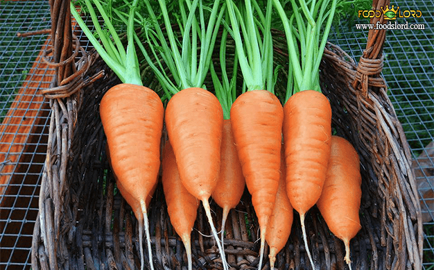 foodslord.com---Chantenay-Carrot