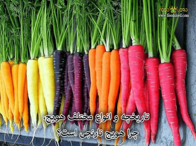 foodslord.com---تاریخچه-و-انواع-مختلف-هویج-چرا-هویج-نارنجی-است