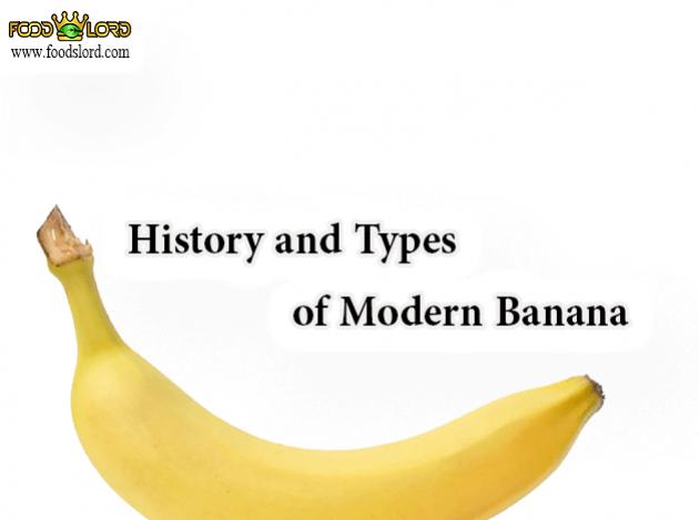 foodslord.com---History-and-Types-of-Modern-Banana