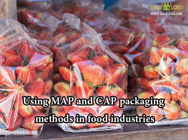 foodslord.com---Using-MAP-and-CAP-packaging-methods-in-food-industries